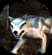 winter wolf Lupo Invernale, portrait Videogame: Dungeons & Dragons Tactics (2007-02) © Atari, Wizards of the Coast & Hasbro