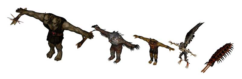 owl bear harpy carrion crawler Orso gufo, ettin, bugbear, arpia e vermeiena, rendering preparatorio Videogame: Temple of Elemental Evil (2003-09) © Atari, Troika Games, Wizards of the Coast & Hasbro