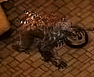 owl bear Orso gufo, screenshot Videogame: Temple of Elemental Evil (2003-09) © Atari, Troika Games, Wizards of the Coast & Hasbro