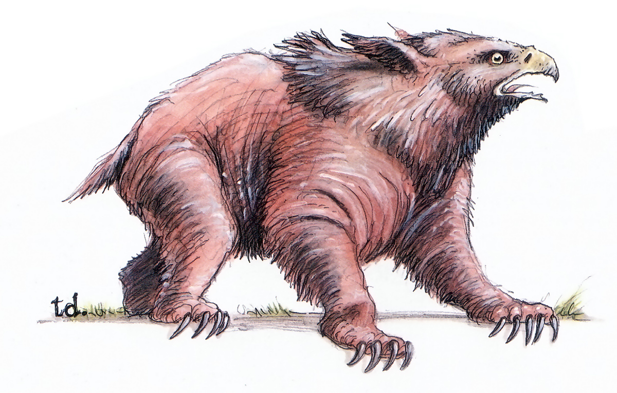 owl bear Orso gufo - by Tony Diterlizzi TSR - Monstrous Manual (1996) © Wizards of the Coast & Hasbro