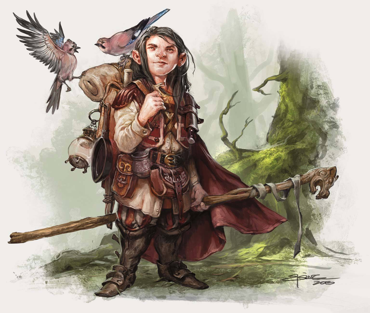 gnome_druid-D%26D_5ed_%282014-09%29_WOTC-Monster_Manual.jpg