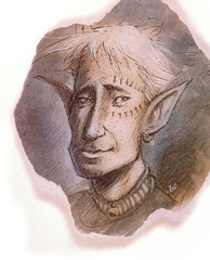 {$tags} Eladrin bralani - by Tony Diterlizzi TSR Planescape Monstrous Compendium Appendix II (1995-09) © Wizards of the Coast & Hasbro