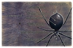 lolth iron fortress La Fortezza di Ferro di Lolth - by Roy Boholst TSR - On Hallowed Ground (1996-09) © Wizards of the Coast & Hasbro