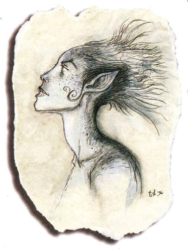 air genasi Genasi dell'Aria - by Tony Diterlizzi TSR - The Planewalker's Handbook (1996-08) © Wizards of the Coast & Hasbro